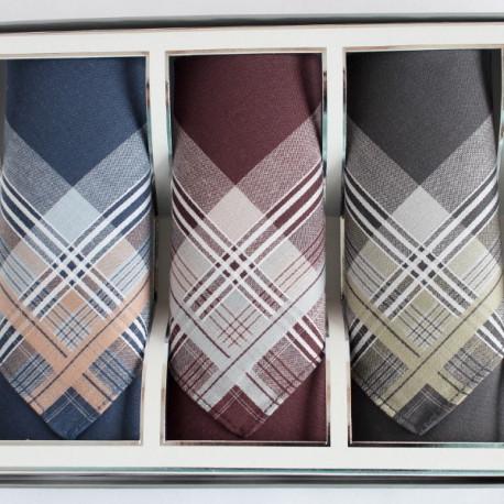 barevné - Pánské látkové kapesníky - dárková sada 3 kusů - Pánské látkové kapesníky ze 100% česané bavlny, balené po třech kusech, jsou kvalitní a jemné. Nabízíme je v praktické krabičce s průhledným víčkem, můžete je tedy i věnovat jako dárek.